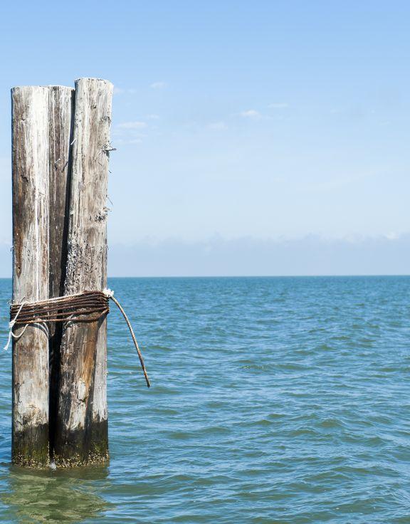 SALT Charters - Saltwater & Light Tackle