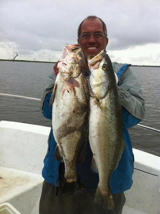 Sea Creature Fishing Charters