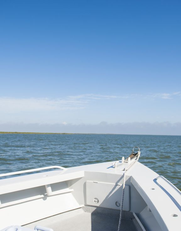 Top Water Charters