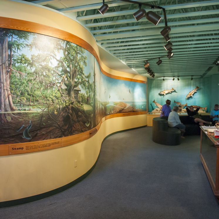 Bayou Terrebonne Waterlife Museum