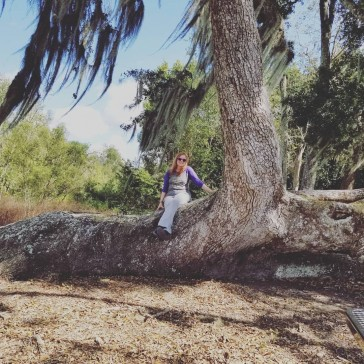 Geocaching geohouma geotour houma tree