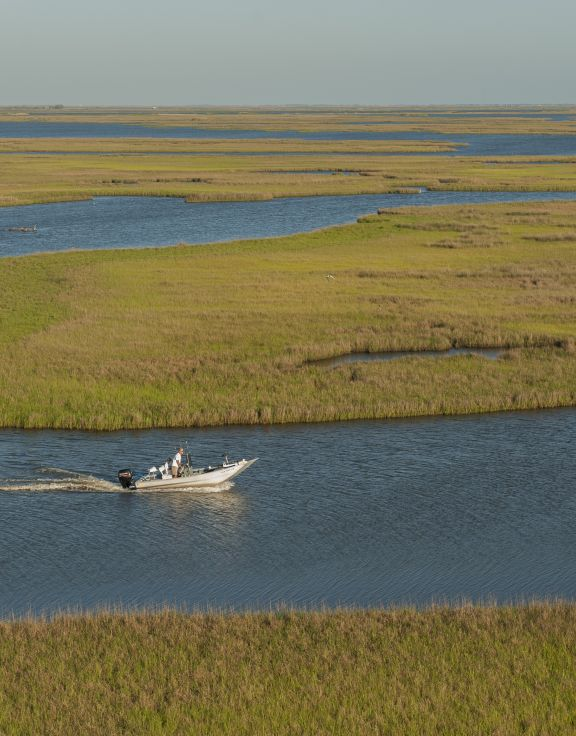 Bayou Guide Service & Charters
