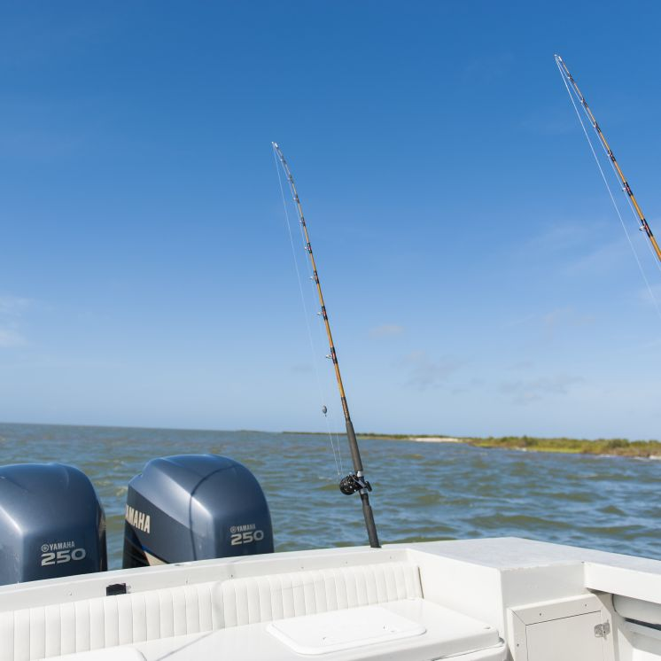 Cajun Fishing & Hunting Charters